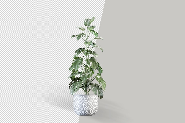 Monstera roślina w doniczce w makiecie renderowania 3d
