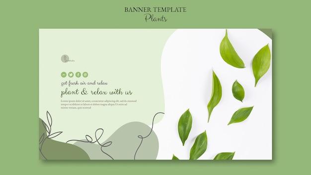 Motyw szablonu banera rośliny
