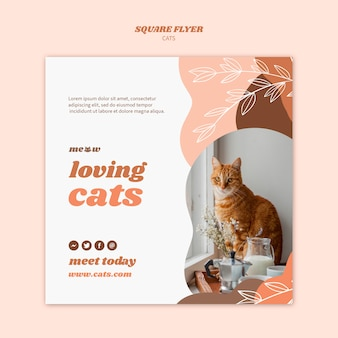 Motyw szablonu ulotki koty