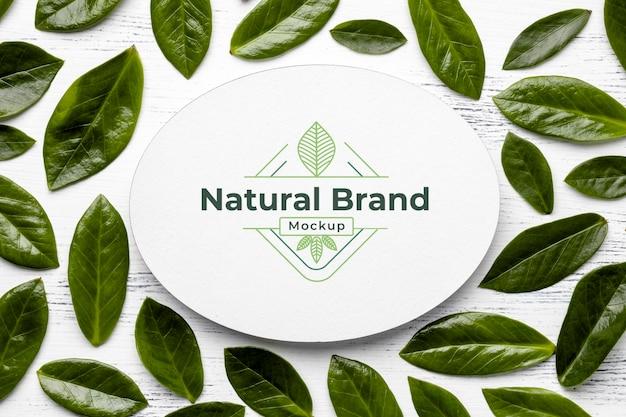 Naturalna makieta marki z liśćmi