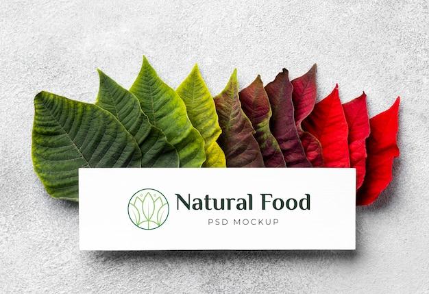 Naturalna makieta żywności z liśćmi