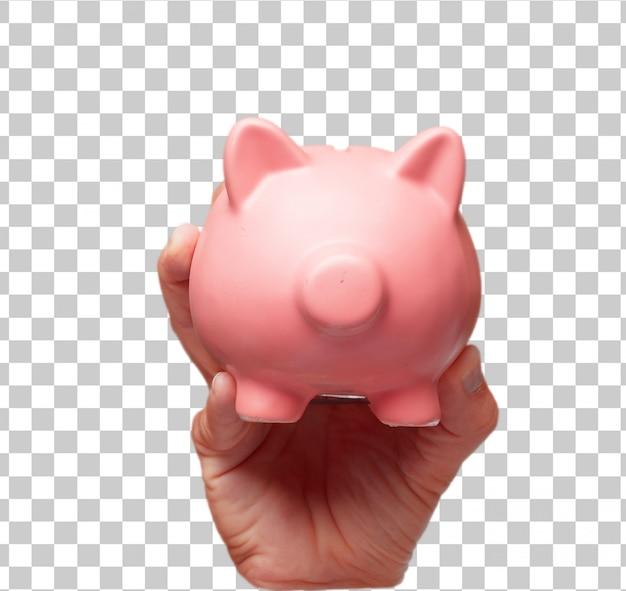 Odosobniona męska ręka trzyma prosiątko banka