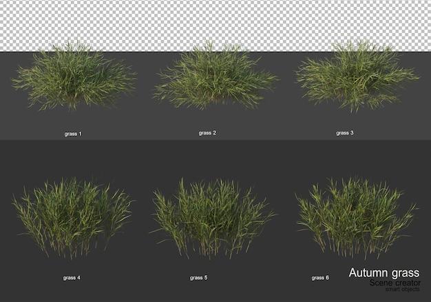 Ogród z suchą trawą jesienią