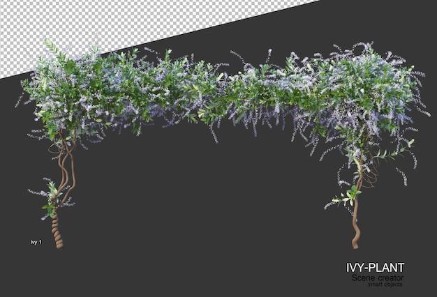 Piękna różnorodność kwiatów w renderingu 3d