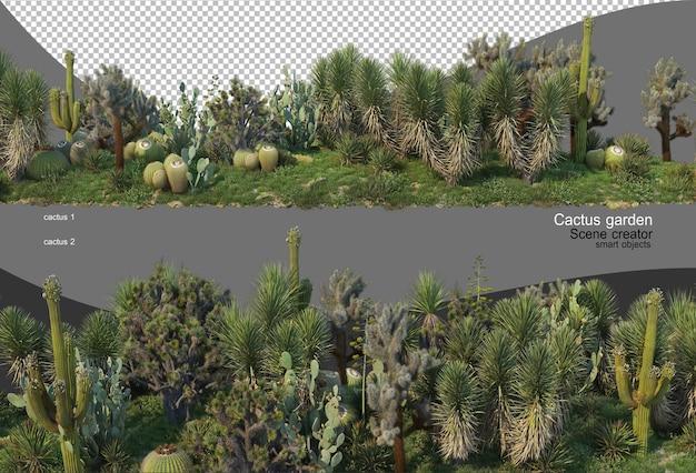 Piękna różnorodność ogrodu kaktusów