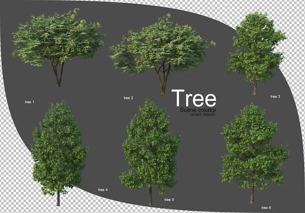 Piękna różnorodność renderowania drzew