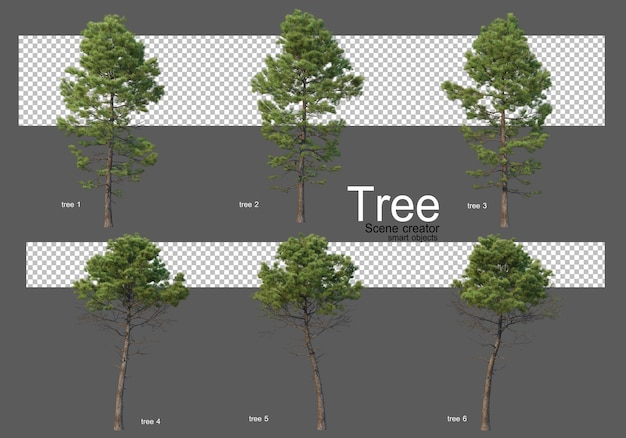 Piękna różnorodność renderowania dużych drzew