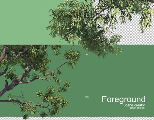 Piękne Gałęzie Drzew Renderowania Pierwszego Planu Premium Psd