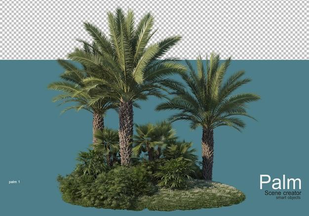 Piękne renderowanie małych plantacji palm