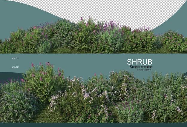 Piękny Mały Ogród Kwiatowy Premium Psd