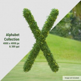 Pionowy alfabet drzewa ogrodowego i zielonych liści, litera x