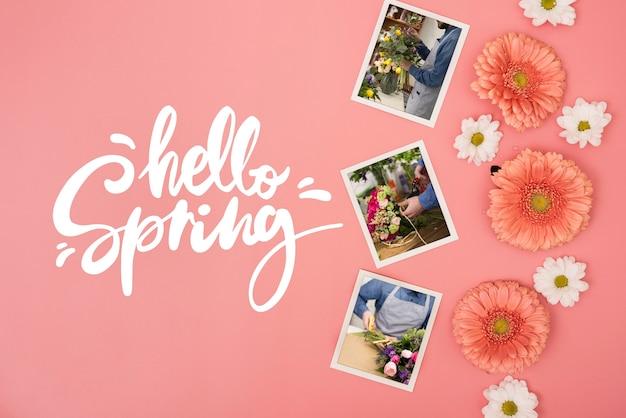 Płaskie ukształtowanie wiosennych stokrotek ze zdjęciami i rumiankiem