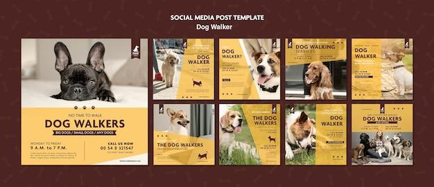 Post w mediach społecznościowych wyprowadzający psa
