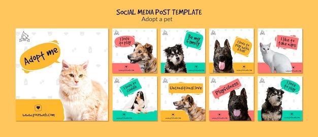 Post w mediach społecznościowych z adopcją zwierzaka