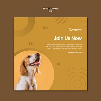 Projekt ulotki ładny pies kwadrat
