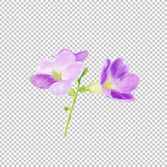 Purpurowa kwiat akwarela