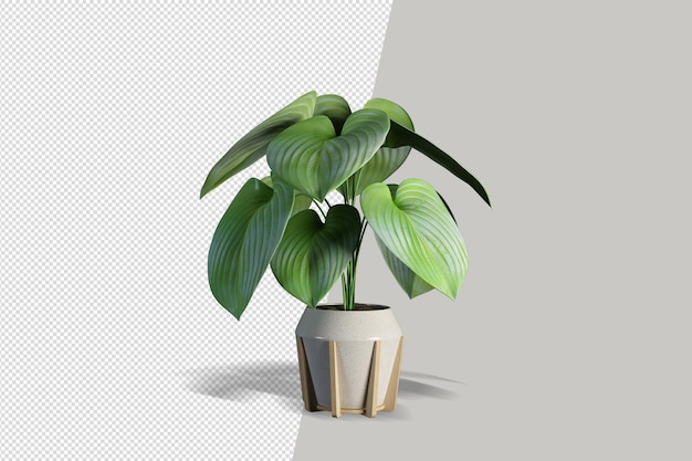 Realistyczna roślina w renderowaniu 3d