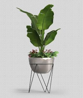 Realistyczne renderowanie 3d rośliny doniczkowej na białym tle