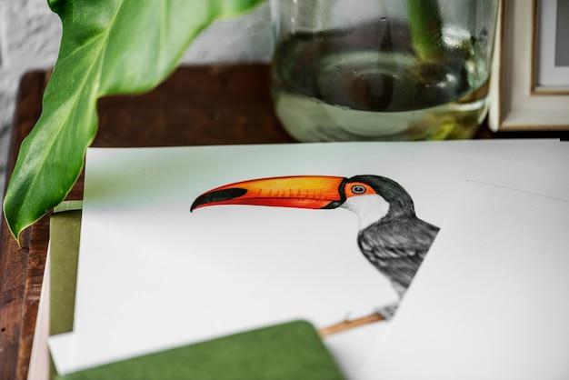 Ręka rysunkowa fotografia dzioborożec ptak