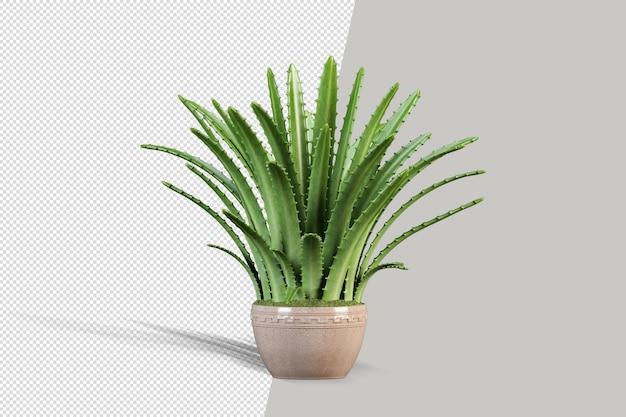 Render izolowanej rośliny w metalowej doniczce