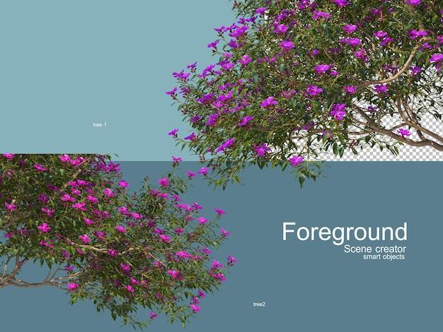 Renderowania 3d drzew foregroung na białym tle