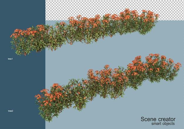 Renderowania 3d pięknych krzewów pod różnymi kątami na białym tle
