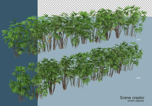 Renderowania 3d pięknych roślin pod różnymi kątami izolowane
