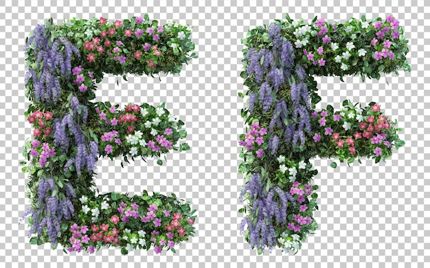 Renderowania 3d pionowego alfabetu kwiat ogród e i alfabetu f na białym tle