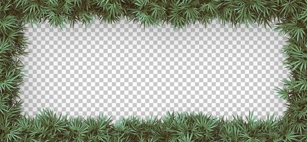 Renderowania 3d ramki konopi na białym tle