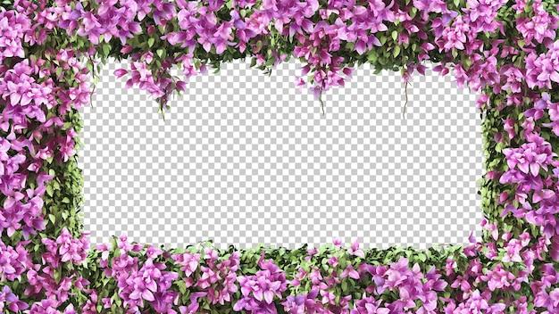 Renderowania 3d ramki kwiatowy bougainvillea