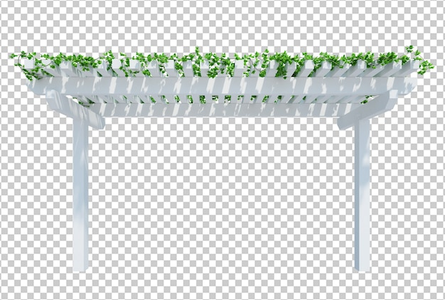 Renderowania 3d rośliny bluszczu izolowane