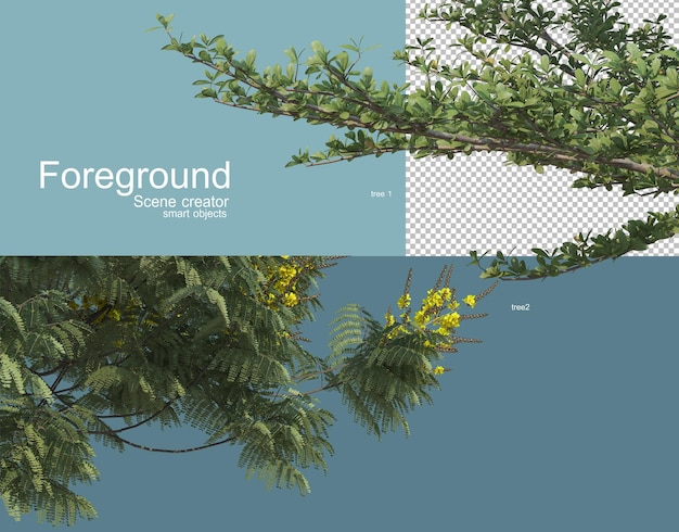 Renderowania 3d różnych drzew pierwszego planu