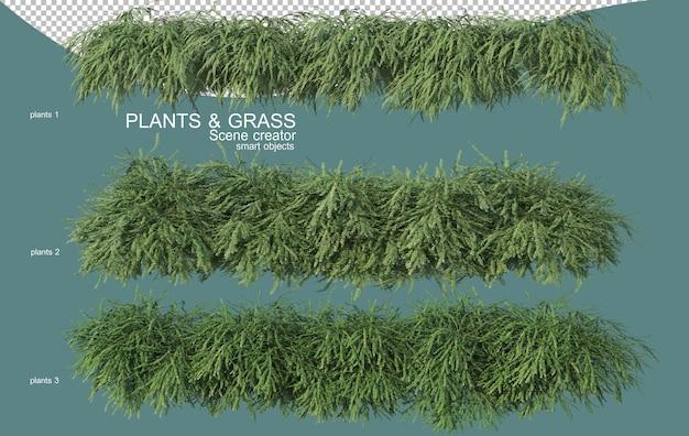 Renderowanie 3d aranżacji traw i krzewów