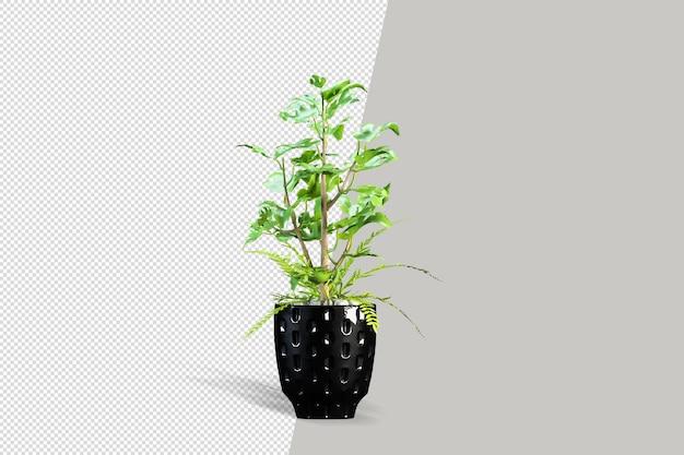 Renderowanie 3d izometryczny roślin