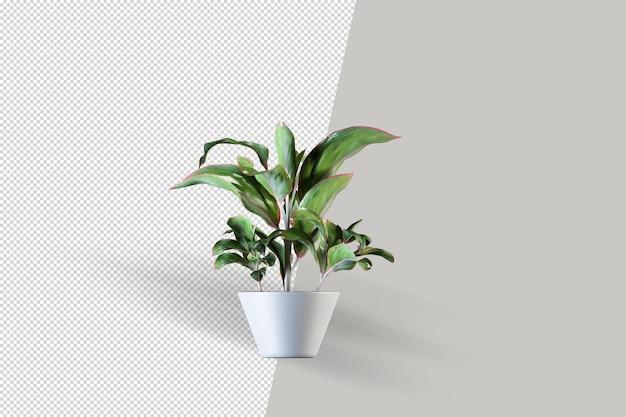 Renderowanie 3d Izometryczny Roślin Premium Psd