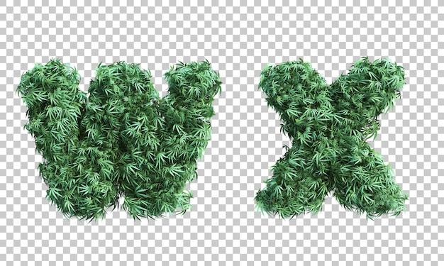 Renderowanie 3d konopi indyjskich litera w i litera x
