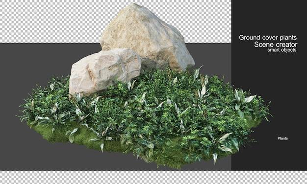 Renderowanie 3d roślin okrywowych i dużych skał