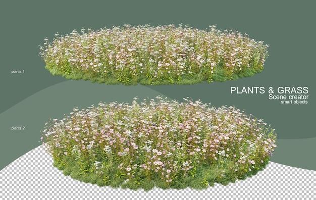 Renderowanie 3d różne rodzaje aranżacji krzewów