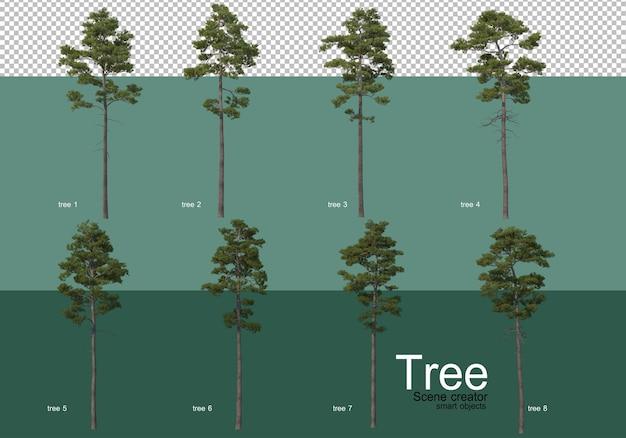 Renderowanie 3d, różne rodzaje układów drzew