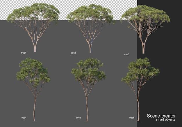 Renderowanie 3d, różne układy drzew