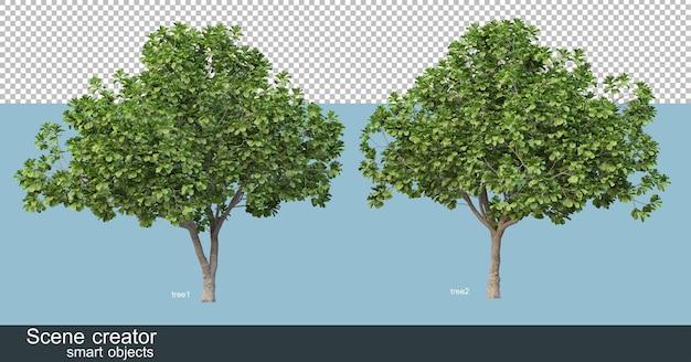Renderowanie 3d różnych kształtów i typów drzew