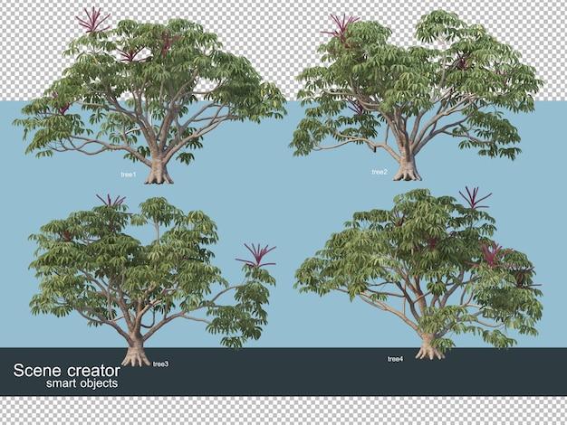 Renderowanie 3d różnych rodzajów drzew