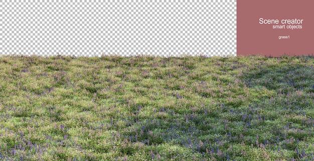 Renderowanie 3d różnych traw