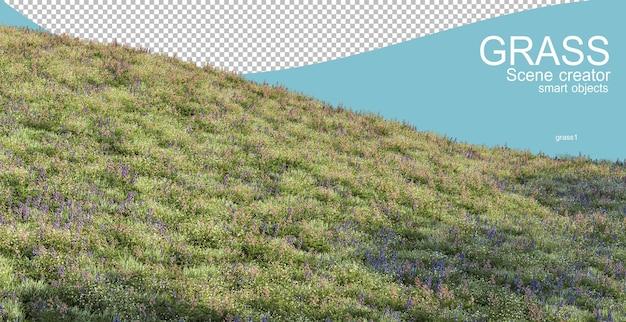Renderowanie 3d różnych typów muraw