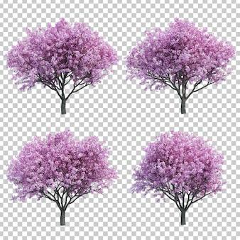 Renderowanie 3d wiśniowego drzewa