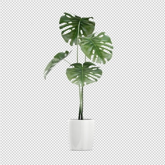 Renderowanie izometryczne roślin 3d