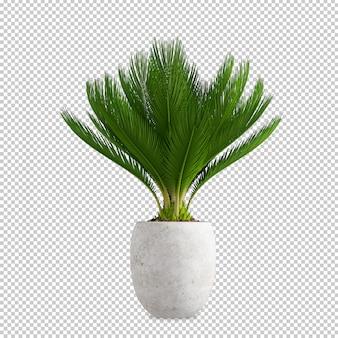 Roślin w doniczce w renderowaniu 3d