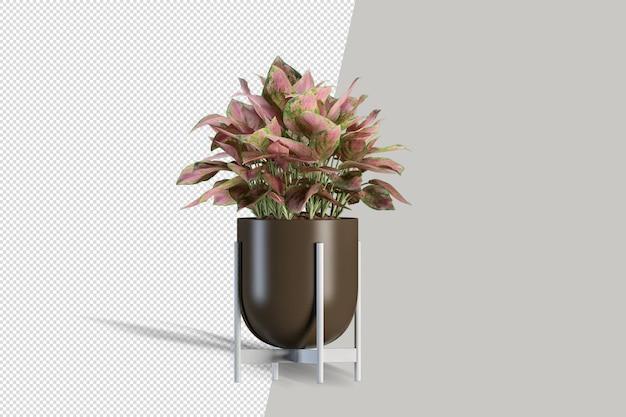 Roślina w renderowaniu 3d na białym tle