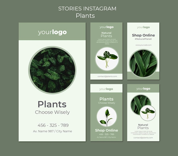 Rośliny sklep szablon opowiadań na instagramie
