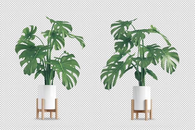 Rośliny w doniczce w renderowaniu 3d